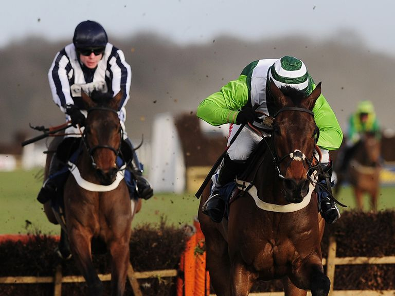 Rock On Ruby (right): Can defend his Champion Hurdle crown