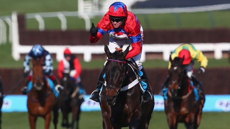 Sprinter Sacre wins last year's Champion Chase