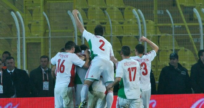 Goal joy: Hungary's Daniel Bode (unseen) is congratulated by teammates after his equaliser against Turkey