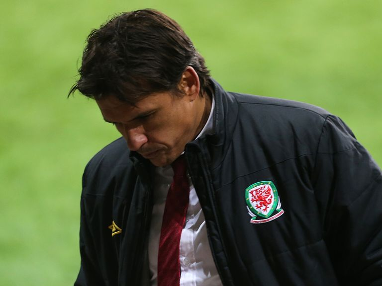 Chris Coleman: Gets backing from Ashley Williams