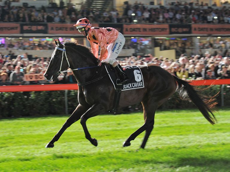 Black Caviar in winning action at Moonee Valley