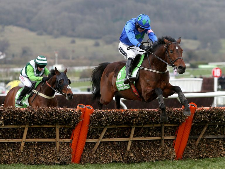 Hurricane Fly jumps the last in last year's Champion Hurdle