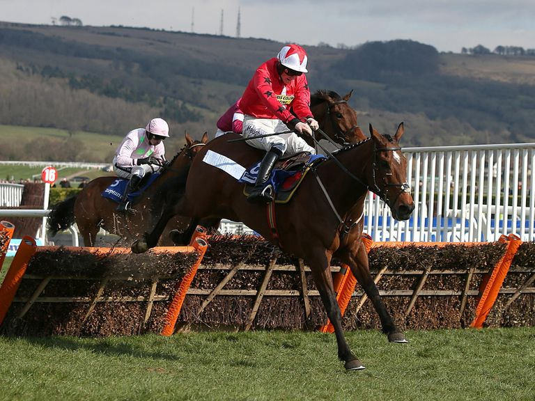 The New One: Fancied to win next year's Champion Hurdle