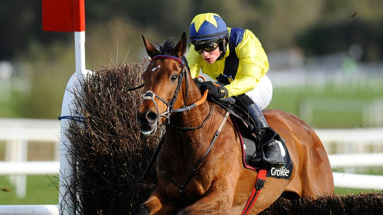 Mount Belbulben: Set to go back over hurdles at Cheltenham