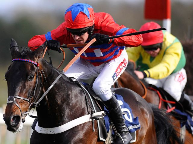 Sprinter Sacre: Accounted for Sizing Europe at Punchestown