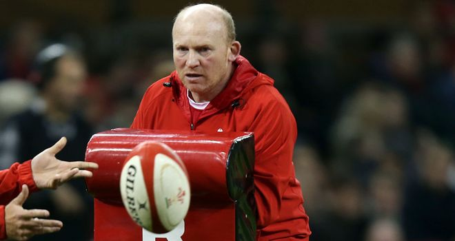 Neil Jenkins: Has been working as kicking coach for Wales