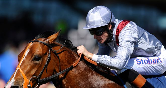 Olympic Glory: Like a 'coiled spring' ahead of Ascot outing