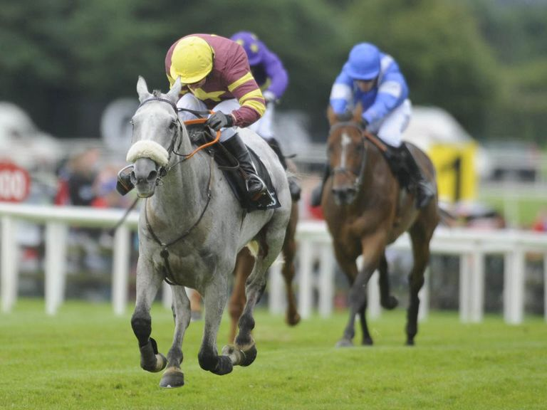 Chicago Grey: Leading fancy for John Smith's Grand National