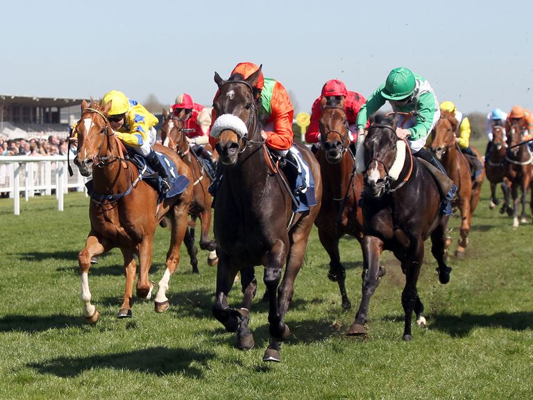 Haaf A Sixpence (orange silks): Fancied to score at Lingfield