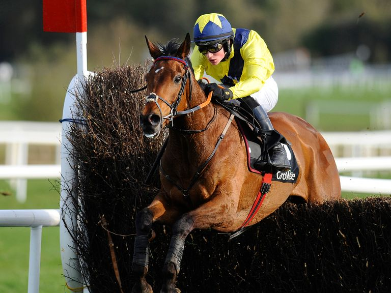 Mount Belbulben: Set to go back over hurdles at Cheltenham
