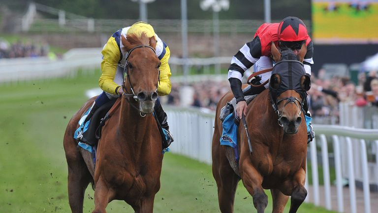 Captain Bertie: Could run in the Betfred Mile if conditions are suitable
