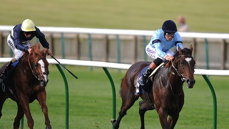Telescope: Worked well in Newmarket and could head to Lingfield