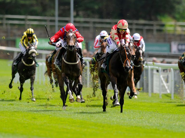 Quatuor: Could struggle to match Bush Beauty in the opener
