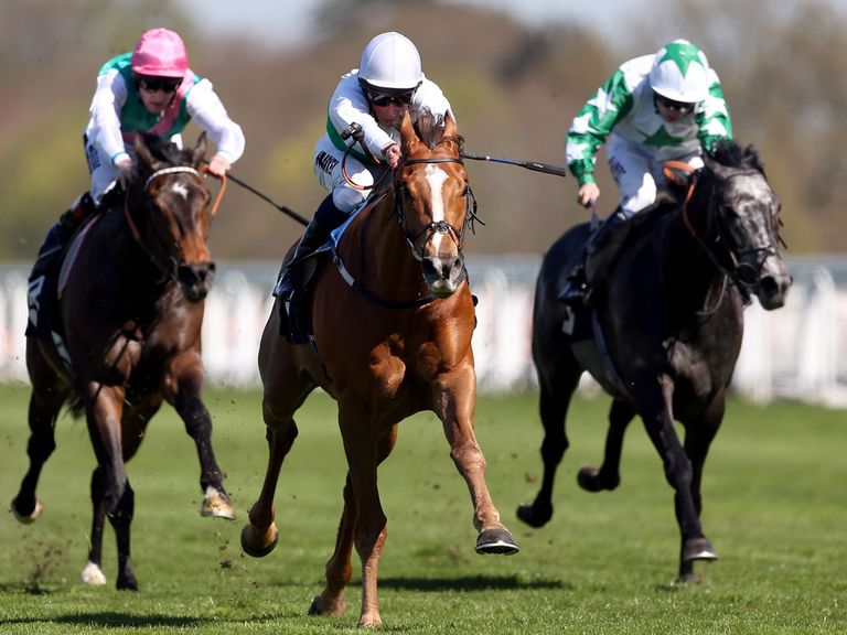 Fencing (centre): Could relish a drop back to seven furlongs
