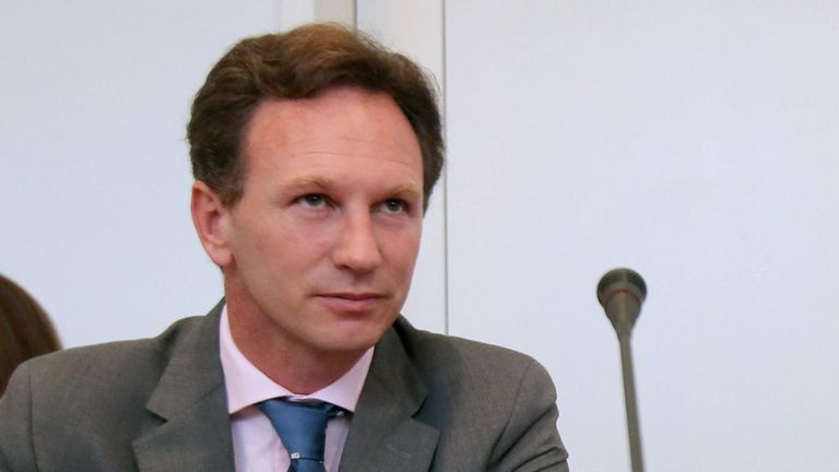 Red Bull boss Christian Horner attended the Tribunal in person