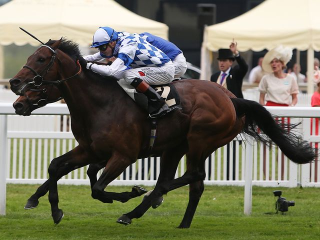 Al Kazeem: Narrowly denied Mukhadram in a thrilling finish