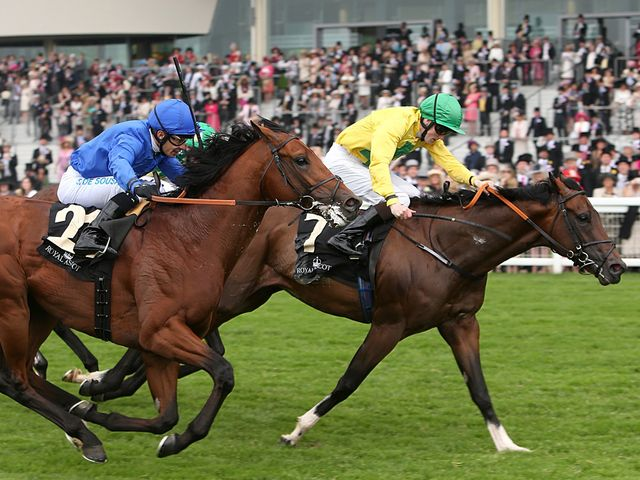 Roca Tumu (yellow) came out on top in the Britannia
