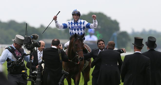 Al Kazeem: Set to run at Leopardstown