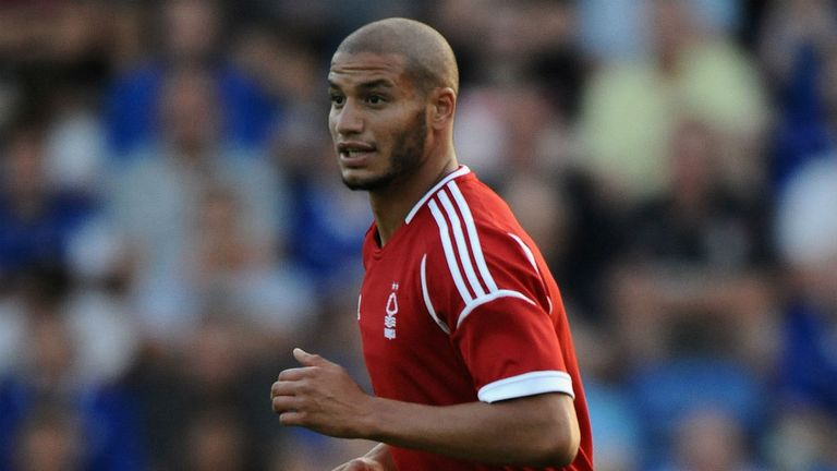 Adlene Guedioura: Completed move to Crystal Palace