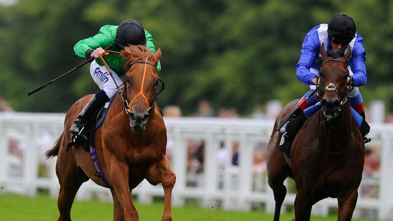 Piping Rock (l): Set for the Autumn Stakes this weekend