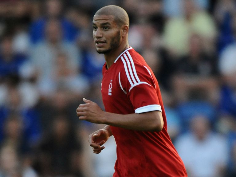 Adlene Guedioura: Added to the Palace ranks