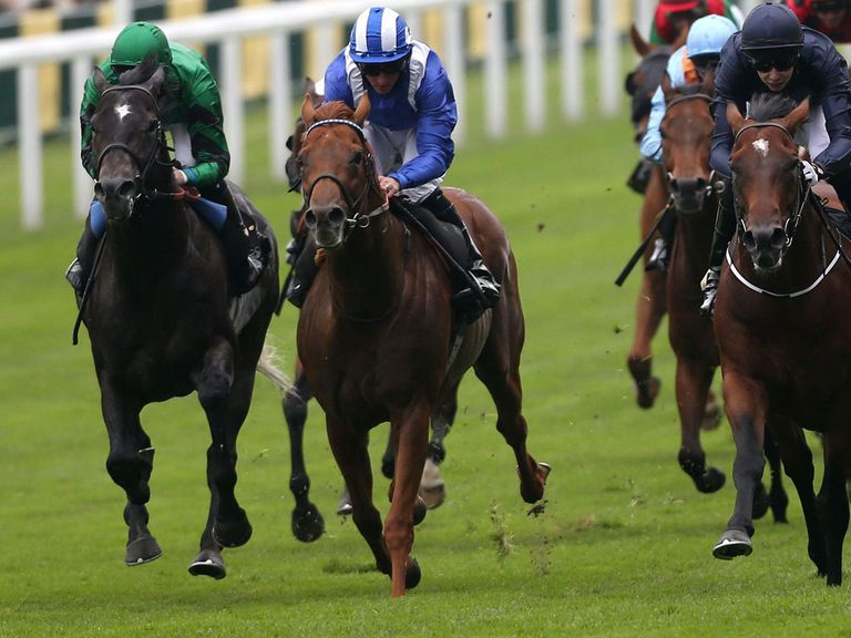 Aljamaaheer (centre): Could relish the test on offer at Ascot