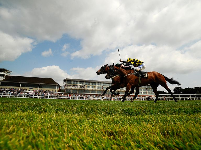 Teolagi can score on Lingfield's all-weather track according to Man On The Spot