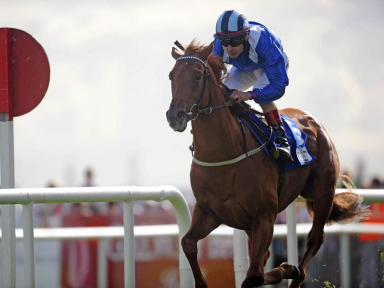 Mustajeeb: Can storm to success in the Amethyst Stakes.