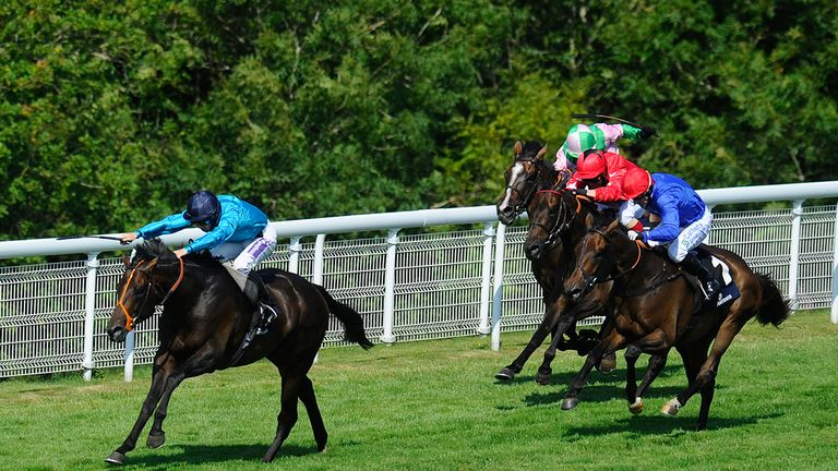 Brown Panther wins at Goodwood last year