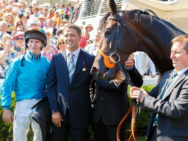 Brown Panther: Melbourne Cup hopeful