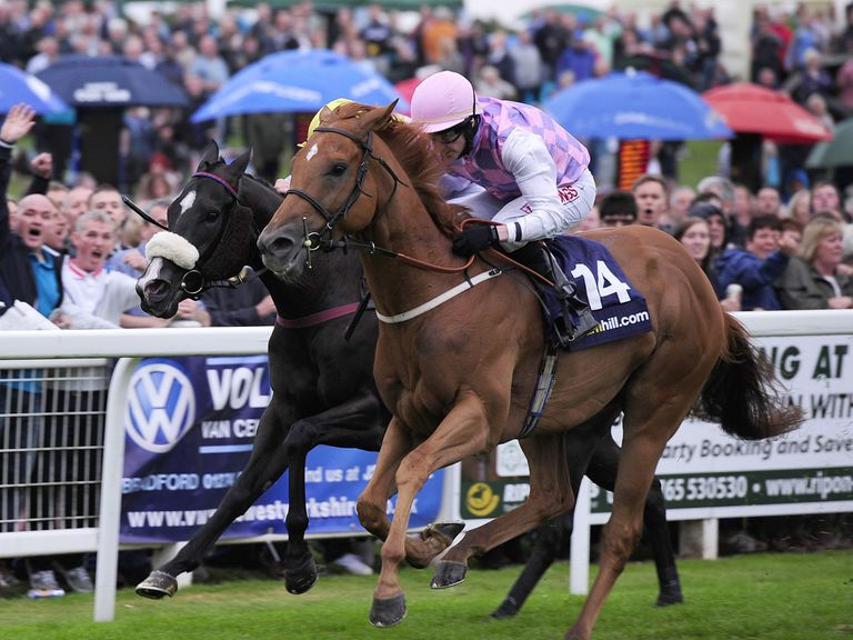 Baccarat - chasing big pay day at Ayr