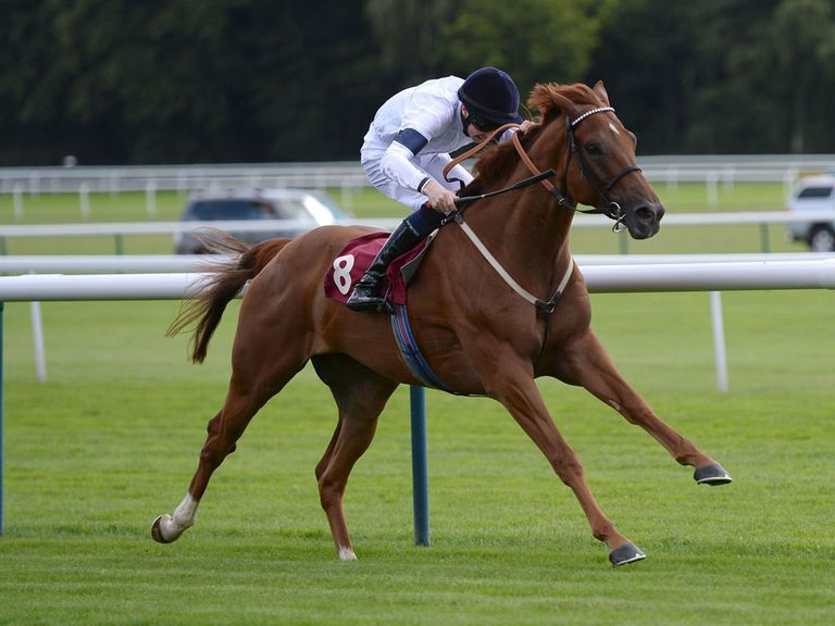 Graphic: Can trouble the judge at York