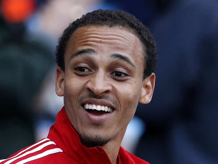 Peter Odemwingie: Target for Swansea boss Michael Laudrup