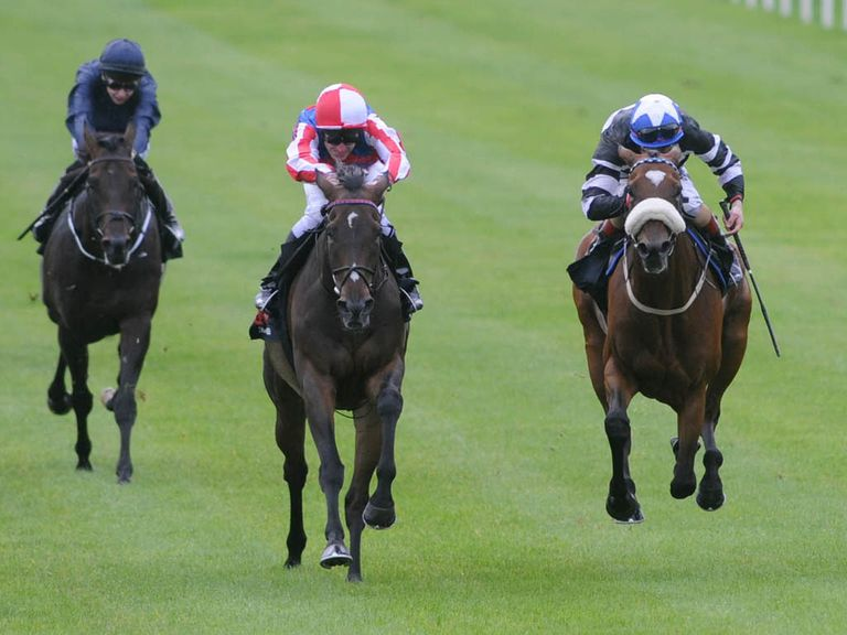 Royal Diamond: Can retain his crown in the St Leger