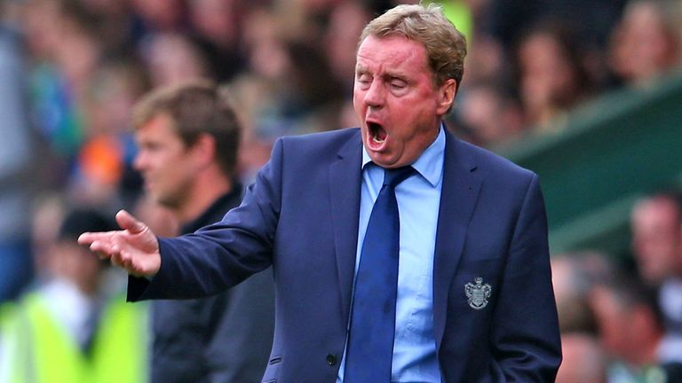 Harry Redknapp: Wants some extra firepower