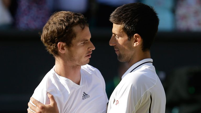 Andy Murray and Novak Djokovic: Favourites for Wimbledon in 2014