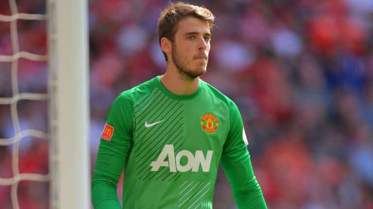 David de Gea: Praised by former United goalkeeper Edwin van der Sar
