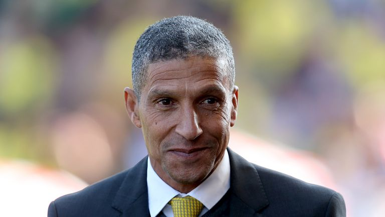 Chris Hughton: Sees plenty of positives from recent Norwich performances