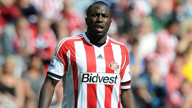 Jozy Altidore: Hopeful of striking up a regular partnership with Steven Fletcher