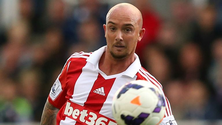 Stephen Ireland: Enjoying his football again during loan spell at Stoke
