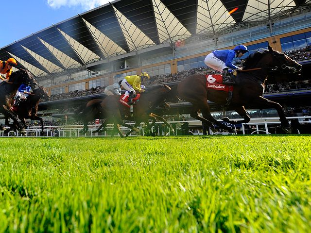 Excellent Result lands a valuable pot at Ascot