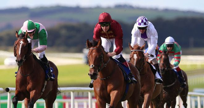 Obliterator: 'A lovely, gorgeous-looking colt'
