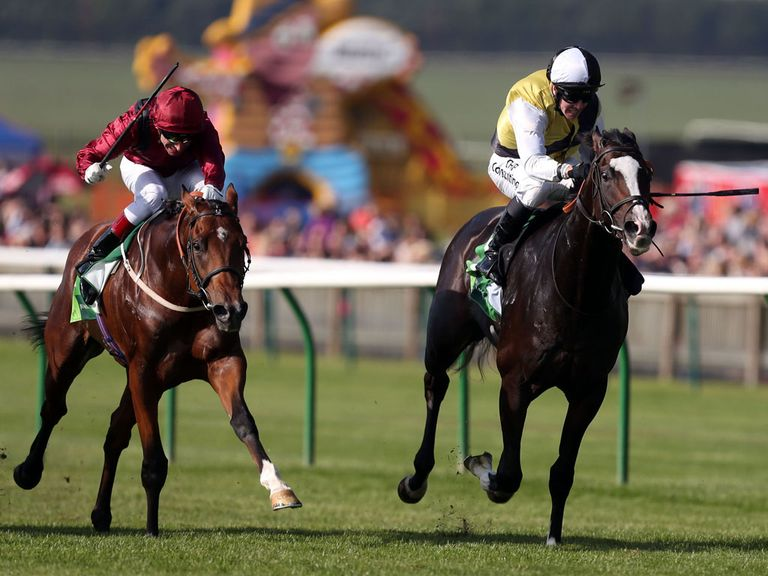 Somewhat (left): Fancied to land the Dee Stakes