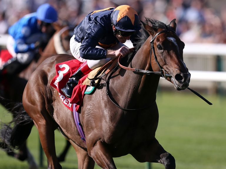 Educate: Set to carry top-weight in the John Smith's Cup