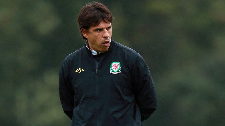 Chris Coleman: Wales manager has paid tribute to Craig Bellamy