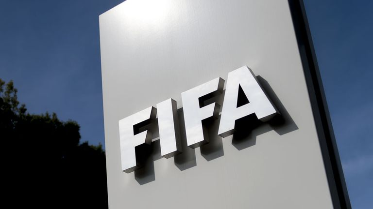 FIFA have chosen the Goalcontrol goal-line technology system for World Cup