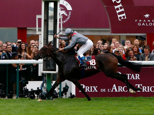 Treve runs out a brilliant winner of the Arc at Longchamp