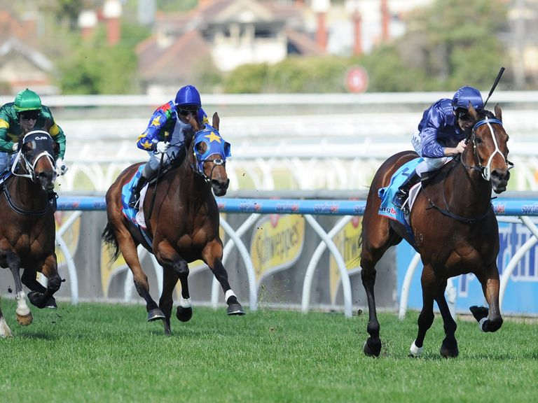 Atlantic Jewel: Scratched from the Cox Plate