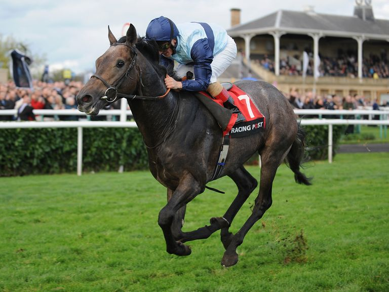 Kingston Hill: Can land the 2000 Guineas according to The Insider