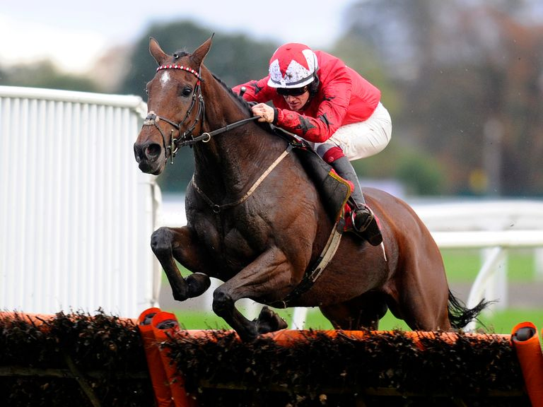 The New One: Hot favourite for International Hurdle